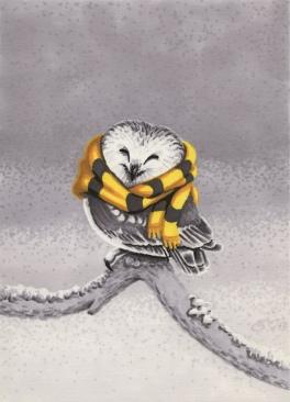 2013 Hufflepuffs Northern Saw Whet Owl